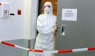 Schweingerippe in Deutschland bestätigt (Foto)
