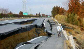 Schwer zerstörte Straße im Nordosten von Japan (Foto)