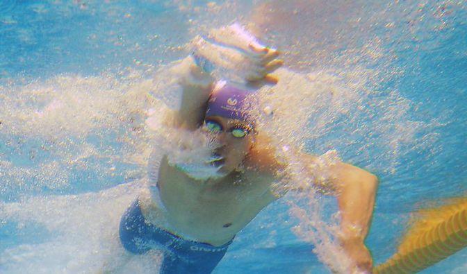 Schwimm-EM zwischen Olympia-Quali und Training (Foto)