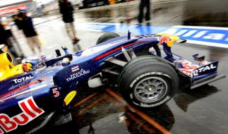 Sebstian Vettel (Foto)