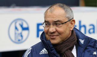 Showdown auf Schalke: Magath geht in die Offensive (Foto)