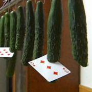 Sie sind das neue Messer: die guten Altenburger Spielkarten.