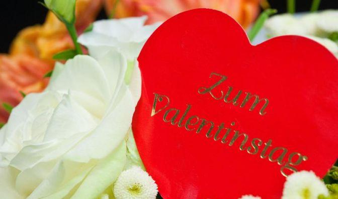 Single-Dasein am Valentinstag (Foto)