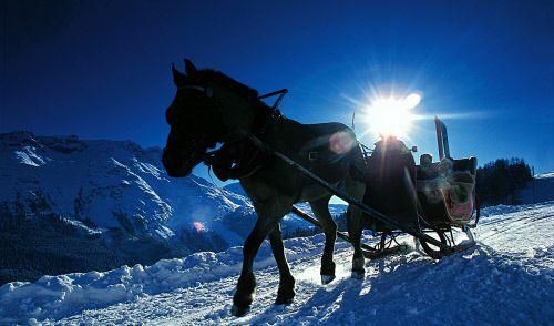 Ski St. Moritz (Foto)