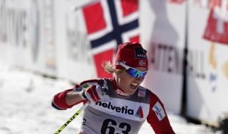 Skofterund und Johnsrud sagen für Tour de Ski ab (Foto)