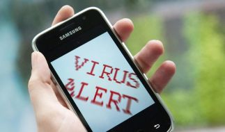 Smartphone-Viren: Mobile Gefahr oder heiße Luft? (Foto)