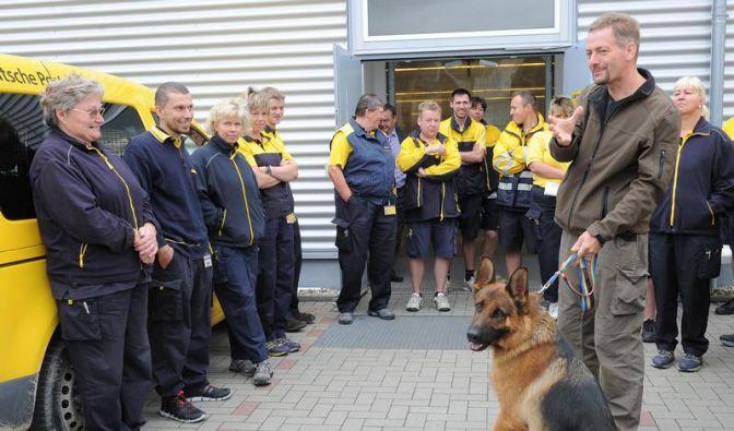 «So ein Schrecken sitzt» - Postboten üben mit Hunden (Foto)