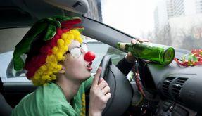 So fahren Narren sicher Auto (Foto)