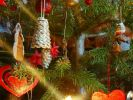 So vermeidet man Weihnachtszoff mit der Familie (Foto)