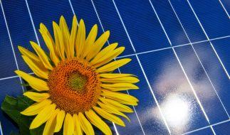 Solaranlage (Foto)