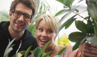 """Sonja Zietlow und Daniel Hartwich moderieren auch die 10. Staffel von """"Ich bin ein Star - Holt mich hier raus!"""" (Foto)"""