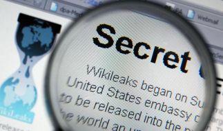 Sorge um Informanten nach WikiLeaks-Panne (Foto)