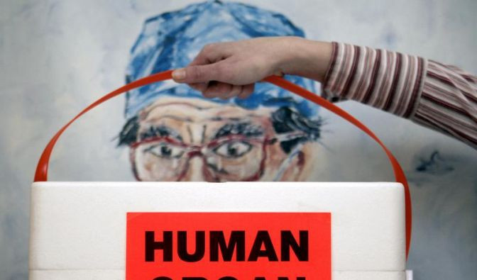 SPD-Lob für geplantes Transplantationsgesetz (Foto)