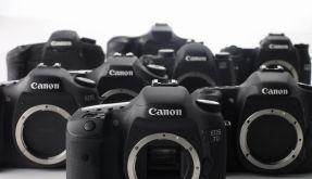 Spiegelreflexkameras (Foto)
