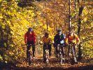 Sport als Krebstherapie: Nicht teuer und wirksam (Foto)