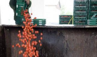 Sprit aus matschigen Tomaten (Foto)