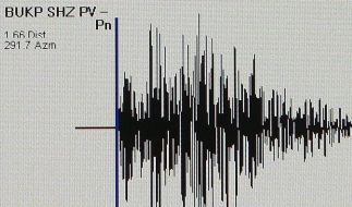 Starkes Erdbeben erschüttert Japan (Foto)