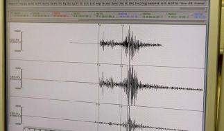 Starkes Erdbeben erschüttert Nordosten Indiens (Foto)