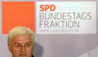 Steinmeier (Foto)