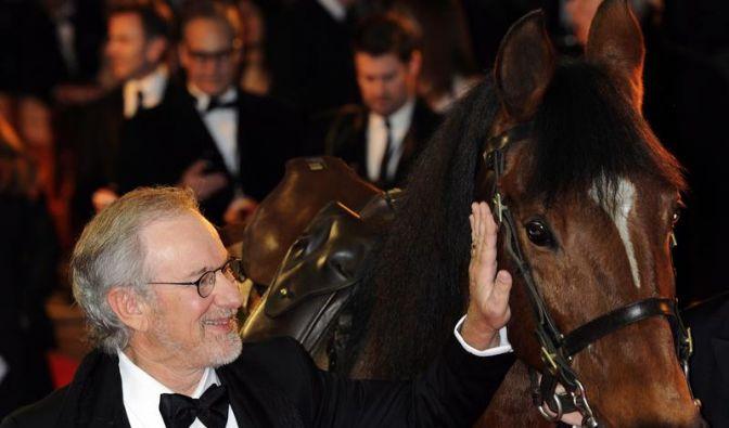 Steven Spielbergs Pferde-Drama «Gefährten» (Foto)