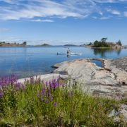 Auch Sportbegeisterte und Naturliebhaber kommen in Stockholm auf ihre Kosten.