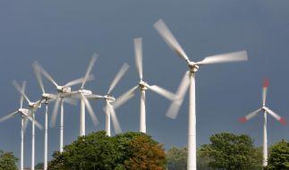 Streit um Energiewende (Foto)
