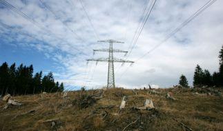 Stromtrassen-Ausbau nach Energiewende erforderlich (Foto)
