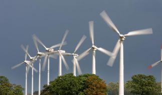 Studie: Ökostrom bis zu 308 Euro günstiger (Foto)