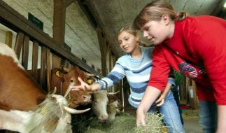 Studie: Substanz im Stallstaub schützt Landkinder (Foto)