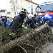 """Zugausfälle, umgestürzte Bäume: So wütete Sturmtief """"Thomas"""" (Foto)"""