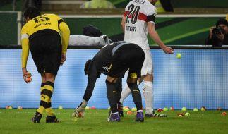 Stuttgarts Christan Gentner (2.vl), Dortmunds Mats Hummels (vorn), Ilkay Gündogan (l) und der Dortmunder Torwart Roman Bürki sammeln Tennisbälle vom Spielfeld, die von Dortmunder Fans auf den Platz geworfen wurden. (Foto)