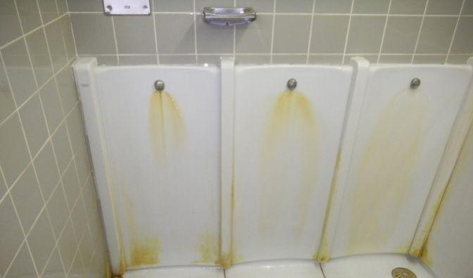 welttoilettentag 2014 alles rund ums klo hygiene bakterien keim alarm auf ffentlichen wcs. Black Bedroom Furniture Sets. Home Design Ideas