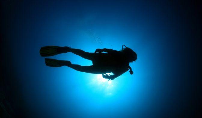 Taucher im Meer gegen das Sonnenlicht fotografiert. (Foto)