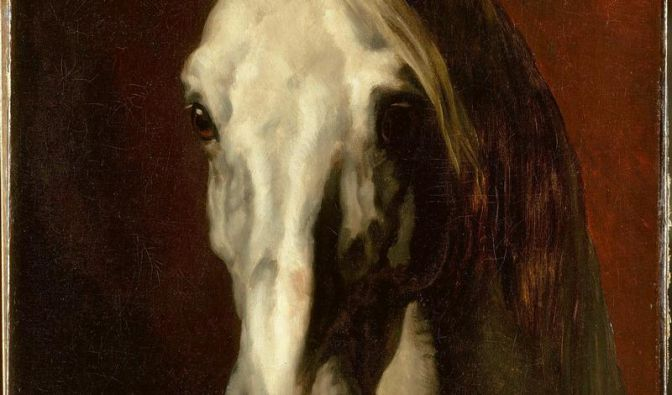 Tierische Schönheiten von Dürer bis Koons (Foto)