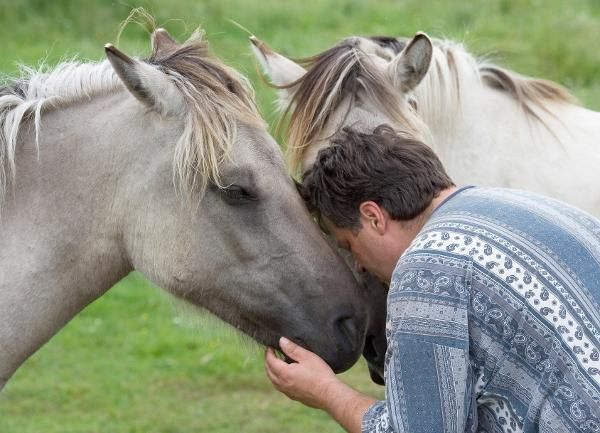 video porno frau mit pferd Balingen(Baden-Württemberg)