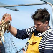 In vier Spezialfolgen stellt Fernsehkoch Tim Mälzer sein kulinarisches Mallorca vor. Dafür wirft er auf einem Fischkutter sogar selbst die Netze aus.