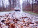 Tipps zum Fahren im Herbst (Foto)