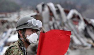 Todeszone um Fukushima (Foto)