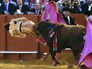 Torero Andres Rey wurde bei einem Stierkampf in Sevilla vom Stier auf die Hörner genommen. (Foto)