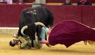 Torero Juan Jose Padilla wurde von einem Stier in der Stierkampfarena in Saragossa aufgespießt. (Foto)