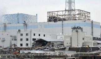 Toter in japanischem Atomkraftwerk (Foto)