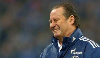 Trainer Huub Stevens und der FC Schalke 04 gehen getrennte Wege. (Foto)