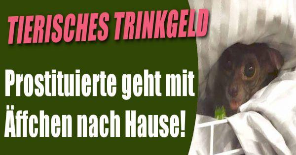 7 tage unter prostituierten prostituierte in hamburg