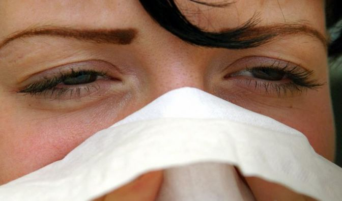 Trotz Erkältung gehen viele Deutsche zur Arbeit (Foto)