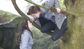 """""""Twilight - Biss zum Morgengrauen"""" zieht Fantasy-Fans ins seinen Bann. (Foto)"""