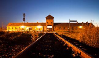 Über eine Million Menschen wurden im KZ Auschwitz-Birkenau getötet. (Foto)