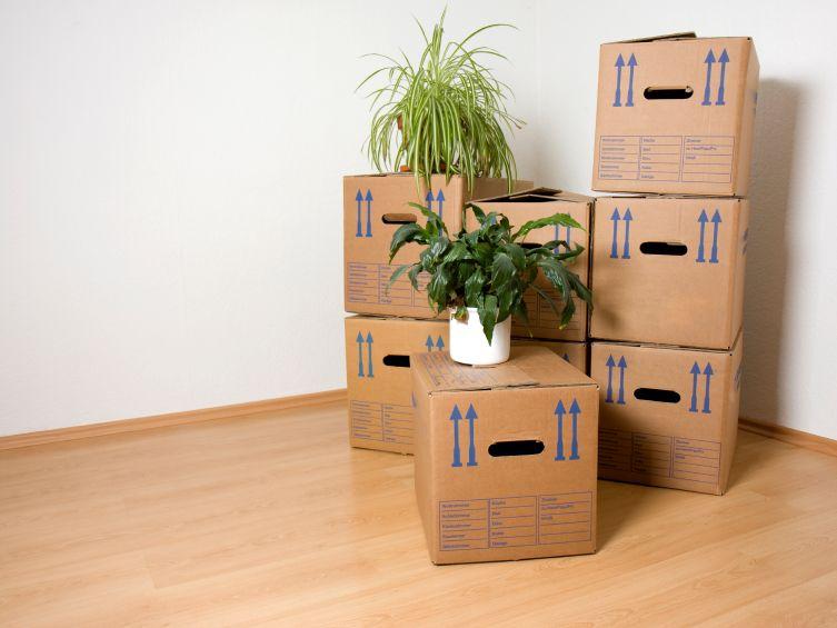 finanzamt der staat als umzugshelfer. Black Bedroom Furniture Sets. Home Design Ideas