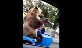 Tierquälerei in Russland