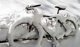 Unterwegs bei Eis und Schnee (Foto)