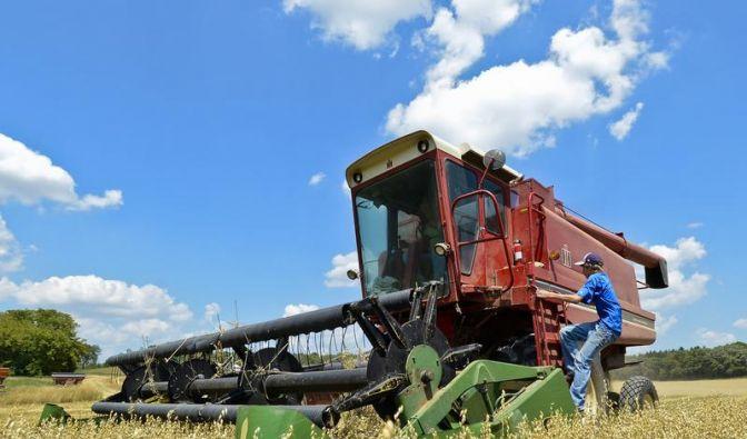US-Regierung fürchtet verheerende Ernteausfälle (Foto)